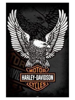 Harley Davidson Artikel