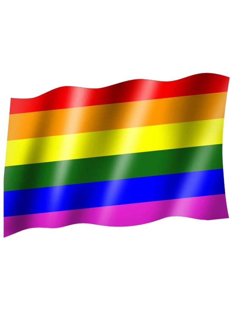 Fahne Regenbogen Zur Dekoration Oder Fahnenmast