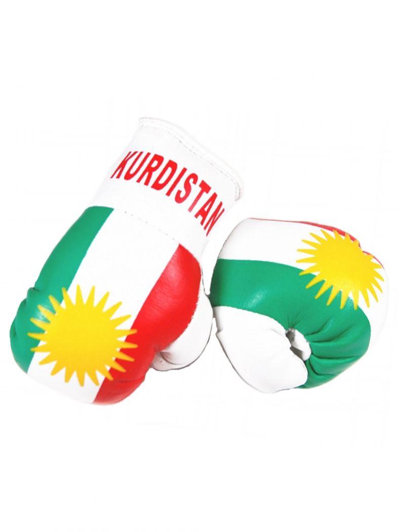 Kleine Boxhandschuhe Kurdistan