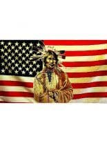 Fahne American Indian