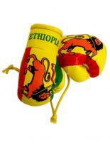 Kleine Boxhandschuhe Äthiopien
